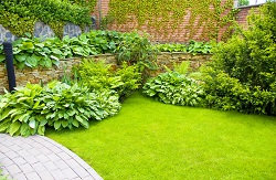 Dependable Lawn Mowing Company in Edgware, HA8